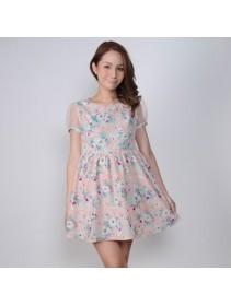 Fashion Flora Design Puffy Transparent Sleeve Mini Dress